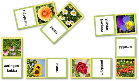 Haastavan kukkadomino-pelin kuva. Kukan kuva ja kukan nimi ovat vuorotellen.