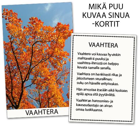 Mikä puu kuvaa sinua? -kortin esimerkki: vaahtera.