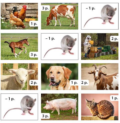 Maatilanpelin 2. kierroksen kuva: eläimien kuvia ja niistä saadut pisteet.